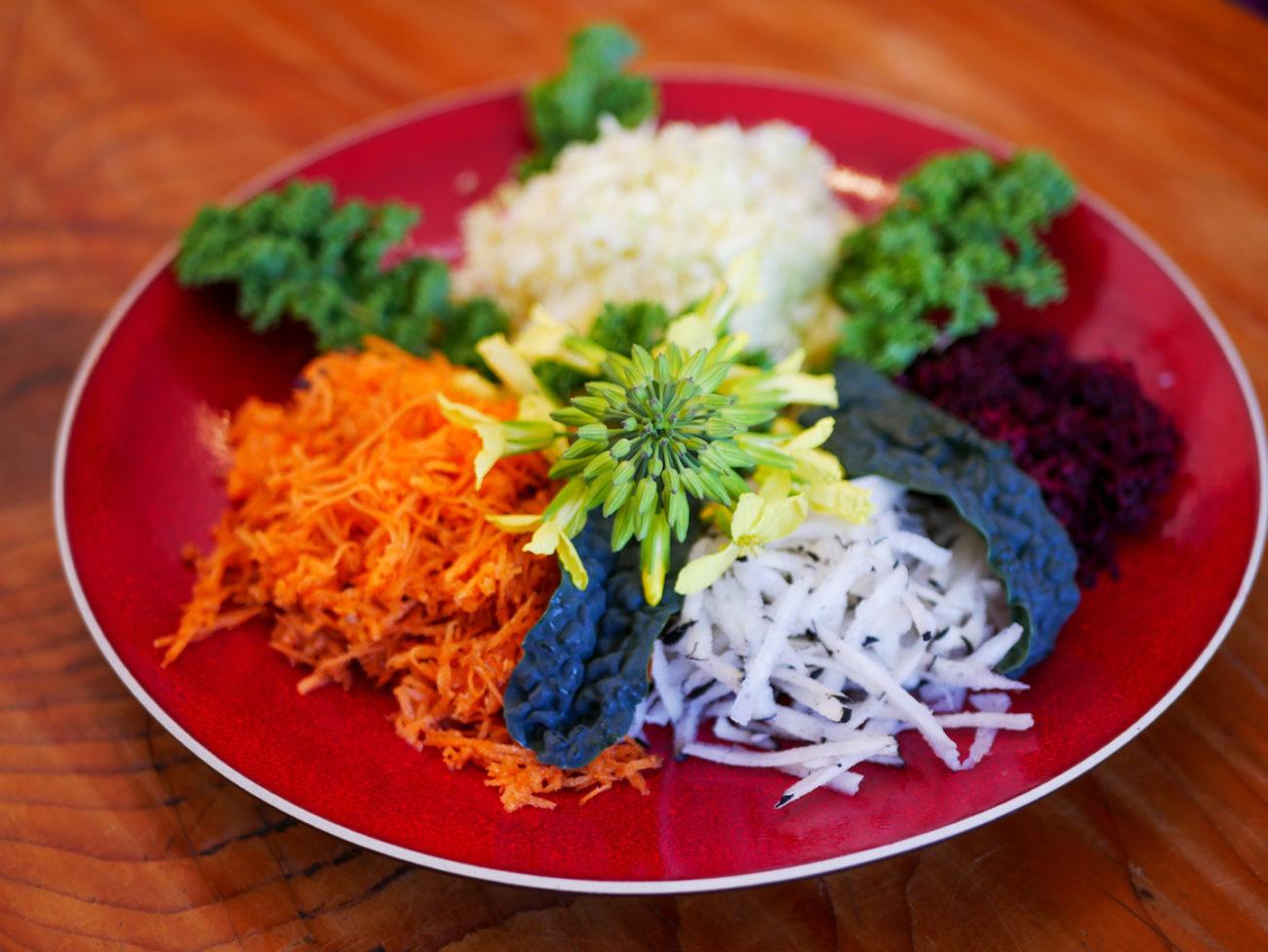 Salade Carotte – Radis noir – Chou Blanc – Betterave