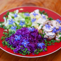 Salade Endive, Céleri, Chou Rouge, Champignons et Fleurs de Bourrache