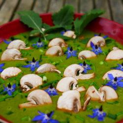 Soupe Ortie Potimarron Champignons