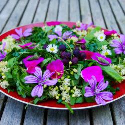 Salade de fleurs